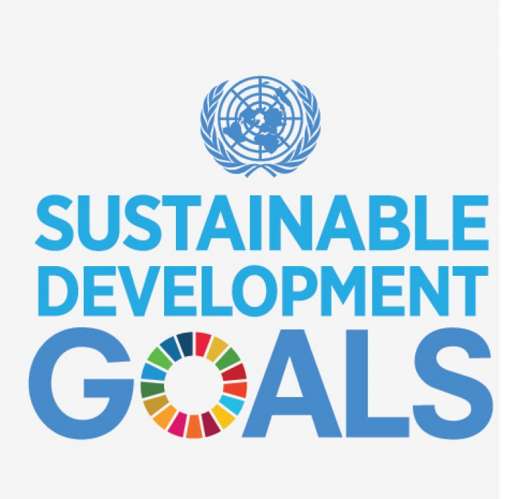 UN Goals for Sustainable Development